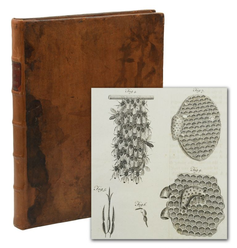 A Treatise on the Management of Bees, Wherein is Contained the Natural History of those Insects: with the various methods of cultivating them, both Antient and Modern, and the improved Treatment of them. To which are added the Natural History of Wasps and Hornets, and the means of destroying them. Thomas Wildman.