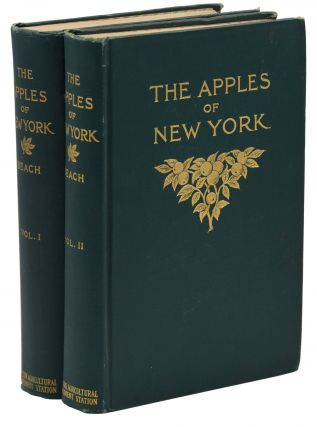 The Apples of New York. S. A. Beach, Spencer Ambrose